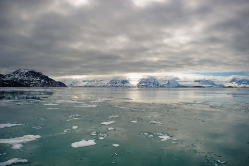 Baffin Bay in 2012, former whaling site (AFP photo)